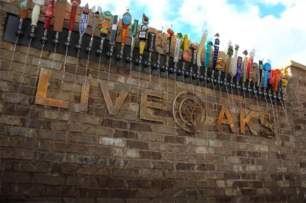 Live-Oaks-Taps.jpg