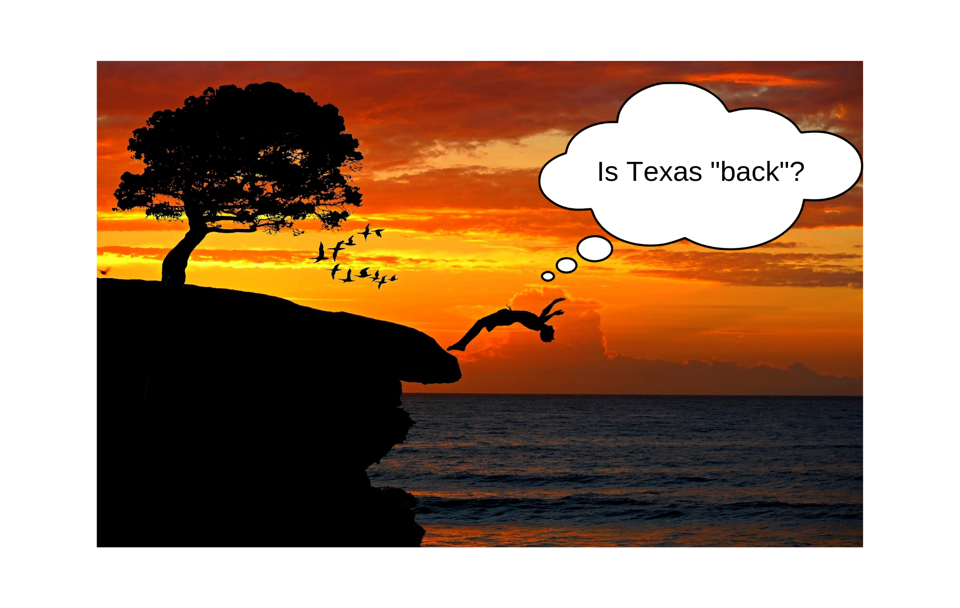 Is Texas _back__